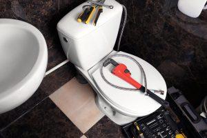 plumber manchester toilet